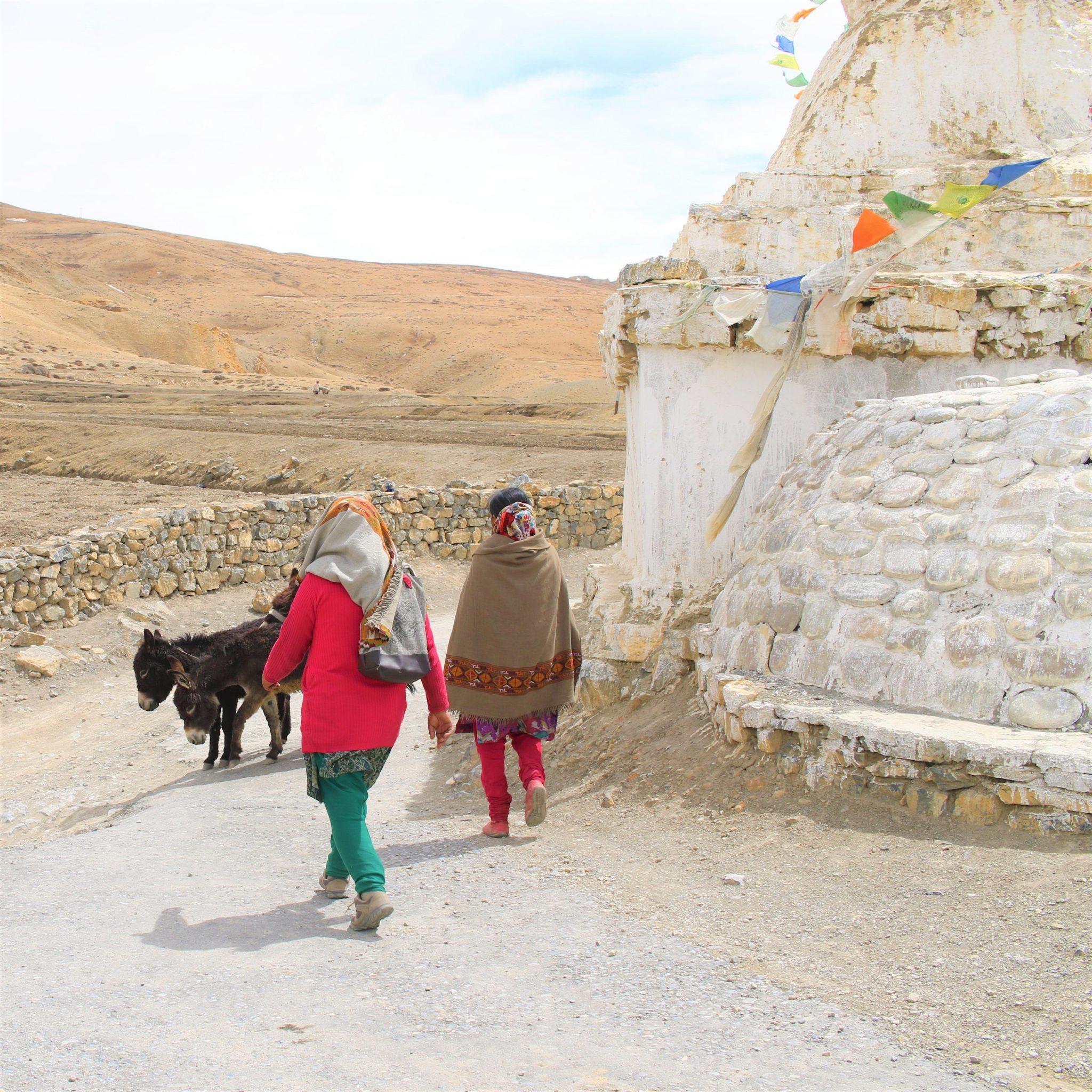 População Himalaias Indianos