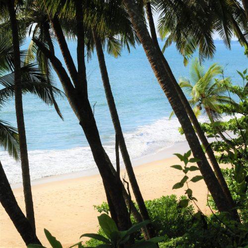 3.16 - Praia Sul India - Viagem India 2020